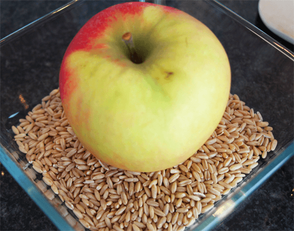 Apfel_und_Hafer